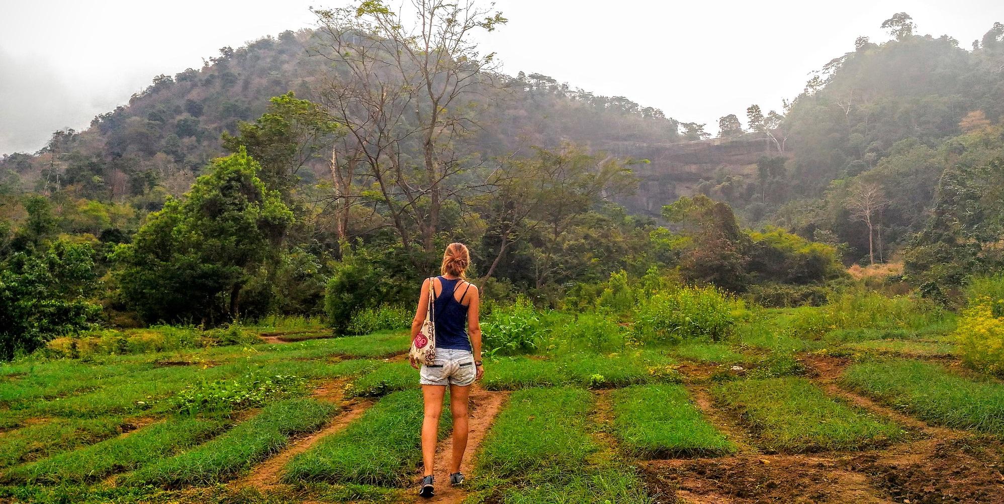 Un petit tour sur laosvo.com pour me convaincre