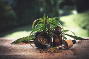 Où trouver une promo sur l'huile de cbd et les produits au cannabis en Belgique ?